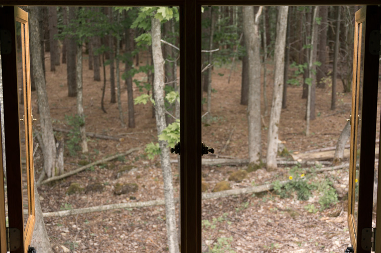 a gute oak double window open, looking out to a forest